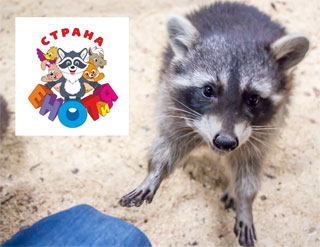 Kiev Petting Zoo Country of Raccoons opened in Art Mall