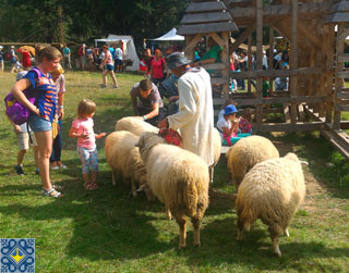 Tustan Festival in Urych | Flock of sheep with a shepherd