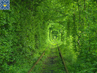 Tunnel of Love was visited by Johan, Norway | Tunnel of Love