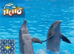 Kiev Sights | Dolphinarium Nemo | Swimming with Dolphins