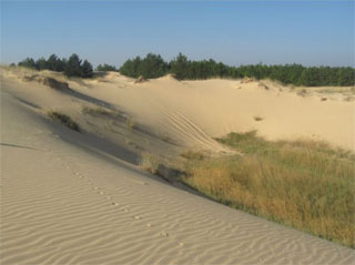 National Park Oleshky Sands reopened Eco Trail Oleshky Desert for tourists