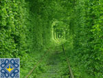 Klevan | Tunnel of Love Ukraine