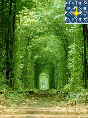 Romantic Tunnel of Love - Klevan, Ukraine